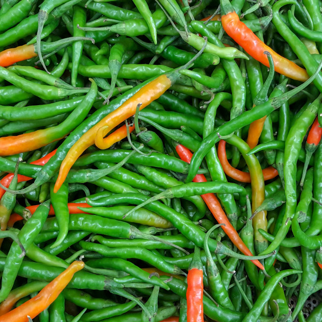 """""""Green and red chillies"""" stock image"""