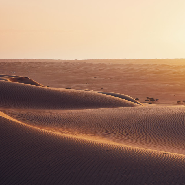 """Sand dunes at sunset"" stock image"