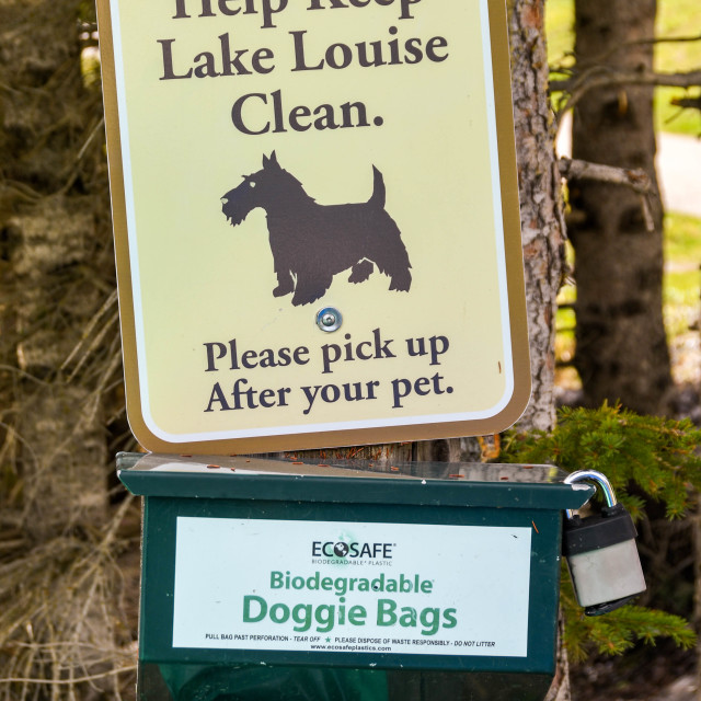"""""""Sign outside the Fairmont Chateau Lake Louise for dog owners"""" stock image"""