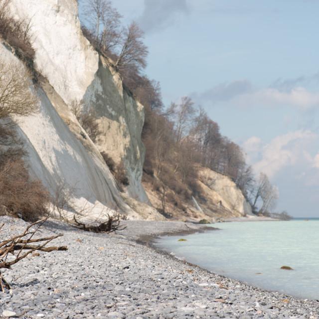 """Landscape on Moens Klint"" stock image"