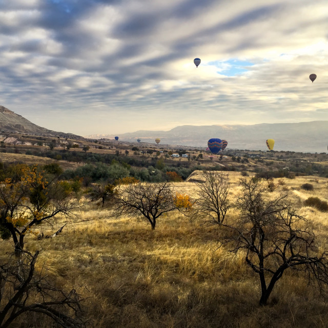 """""""Cappadocia landscape with air balloons at sunrise"""" stock image"""