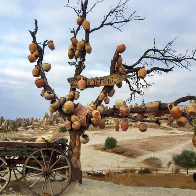 """Cappadocia famous Pottery tree under the blue sky"" stock image"