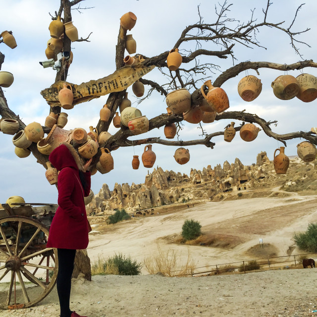 """""""Girl in red coat stand under the Cappadocia famous Pottery tree"""" stock image"""