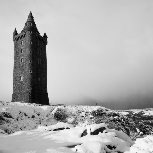 """Winter at Scrabo"" stock image"