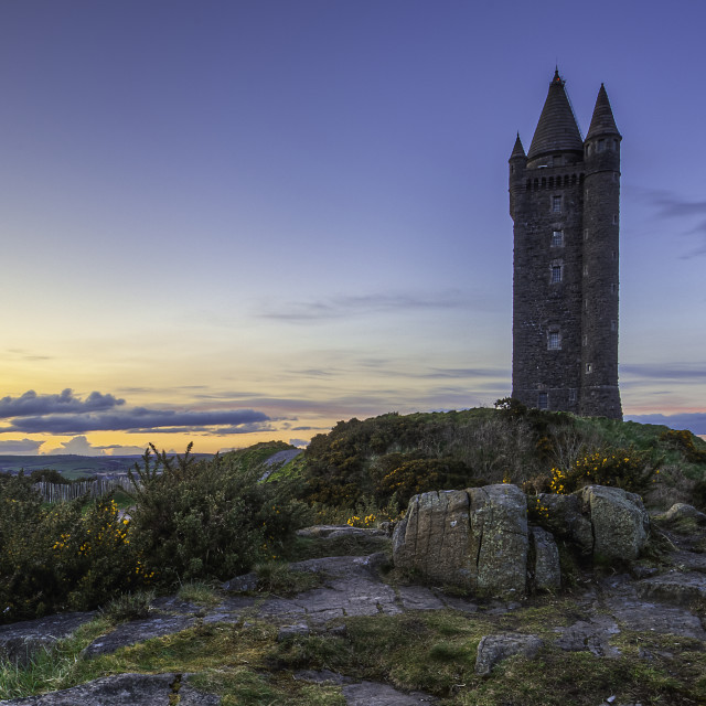 """""""Sunset at Scrabo"""" stock image"""