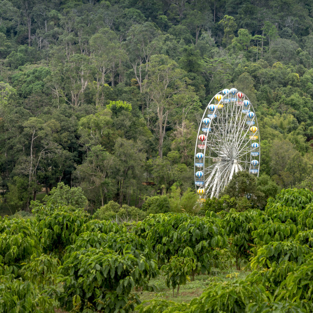 """ferris wheel giant in the park between the forest at Bao Loc, Lam Dong province, Vietnam"" stock image"