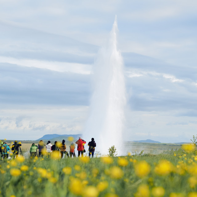 """""""An erupting geyser and tourists in Iceland."""" stock image"""