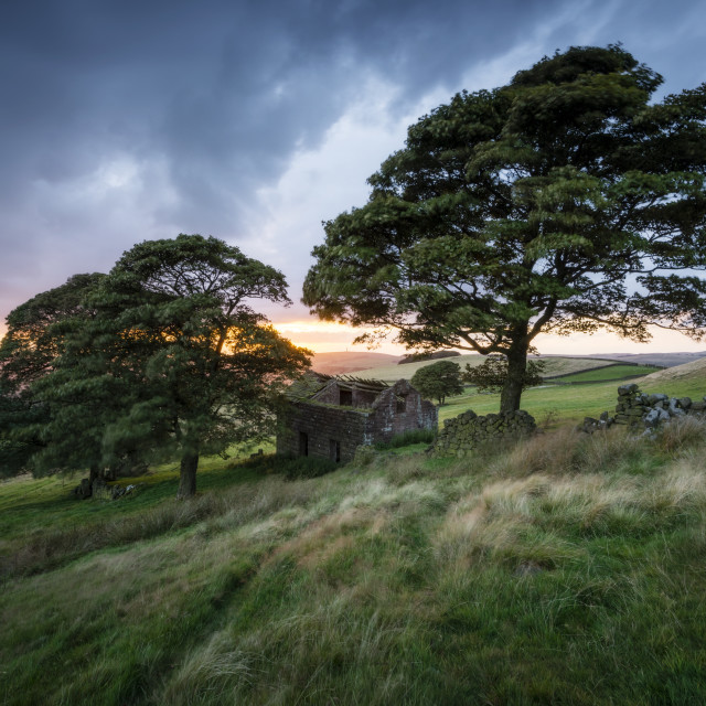 """""""Derelict Barn at The Roaches"""" stock image"""