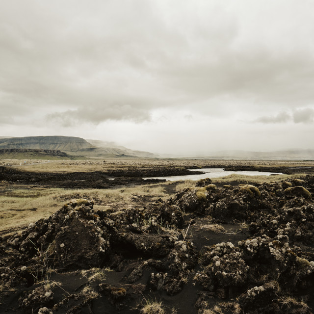 """The moss covered lava landscape of Iceland."" stock image"