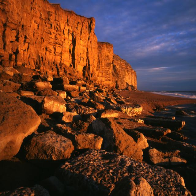 """Burton Cliff near Burton Bradstock Dorset"" stock image"