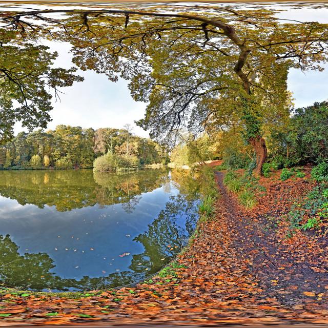 """Hiltingbury Lakes in Autumn (SLR-360VR)"" stock image"
