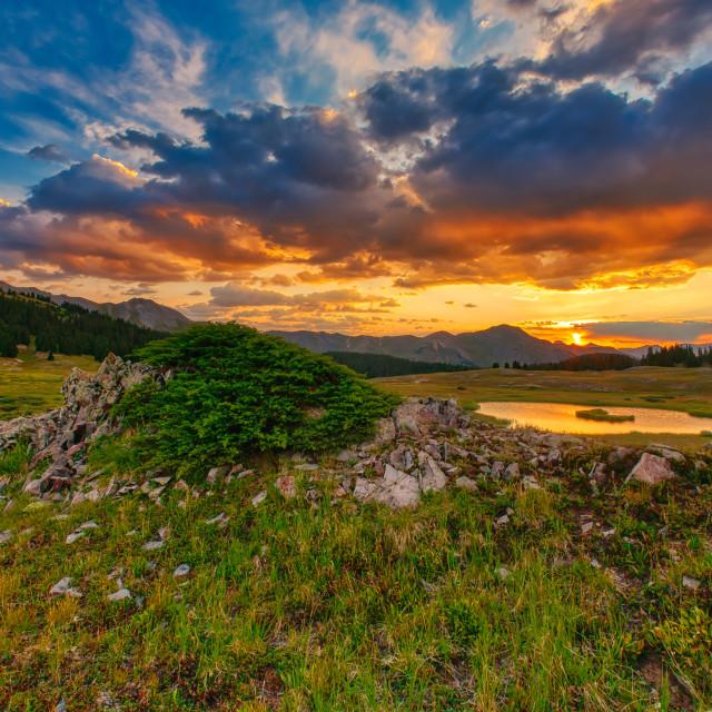 """Alpine Sunset"" stock image"