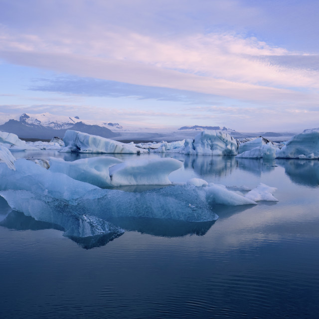 """""""Melting icebergs floating in a glacial lagoon"""" stock image"""