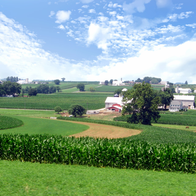 """Amish Farm Country"" stock image"