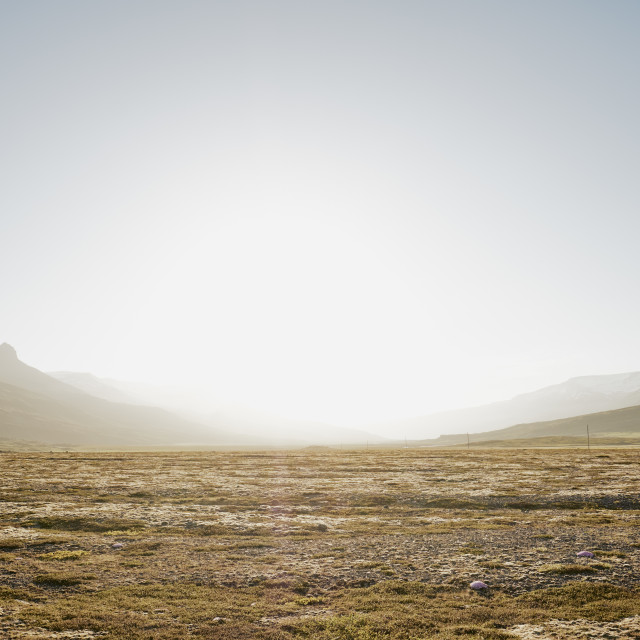 """An empty summer tundra landscape in Iceland."" stock image"