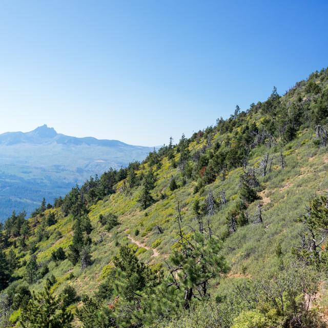 """""""Central Oregon Landscape"""" stock image"""