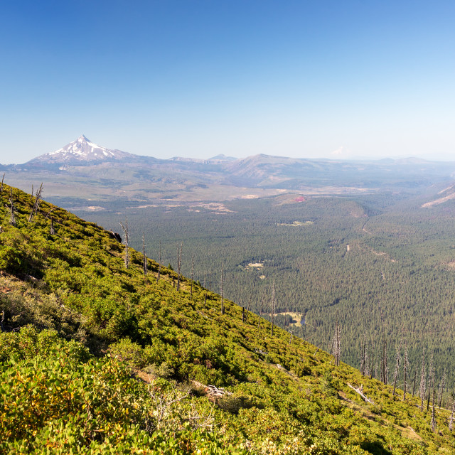 """""""Black Butte and Mt. Jefferson"""" stock image"""