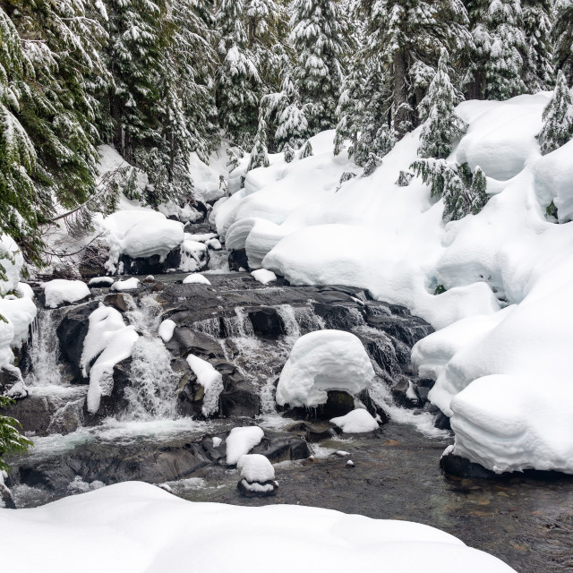 """Creek on Mt. Rainier"" stock image"