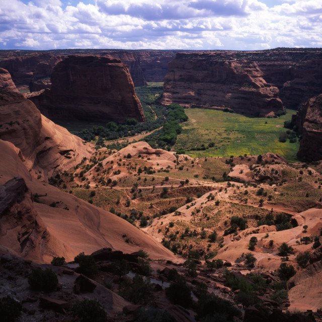 """Canyon de Chelly from White House Ruin Overlook"" stock image"