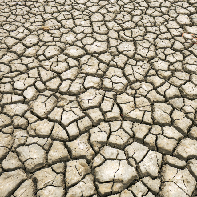 """""""Cracked parched earth :-("""" stock image"""