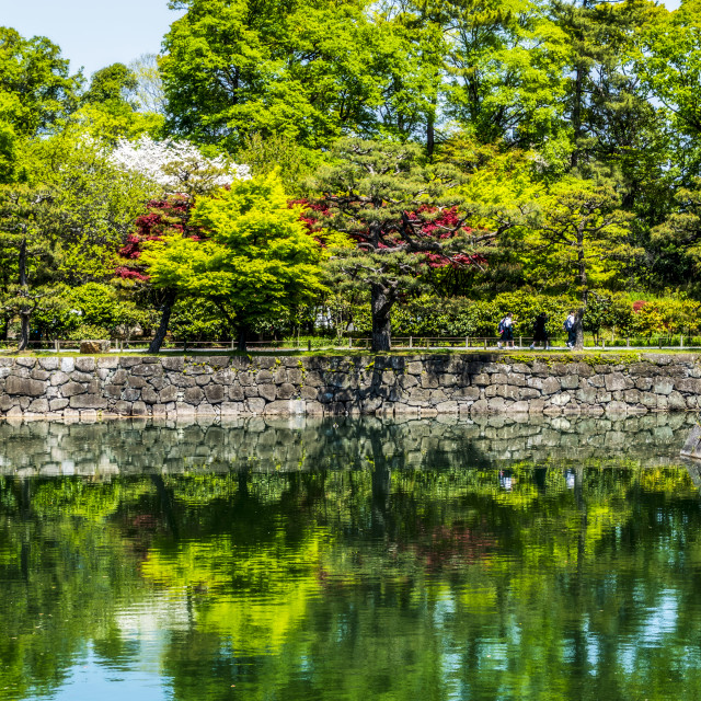 """Water filled Moat of Nijo Castle, Kyoto"" stock image"