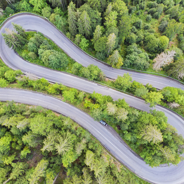 """""""View from above of a forest curvy road"""" stock image"""