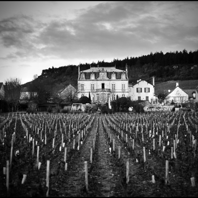 """""""Chateau in Burgundy"""" stock image"""