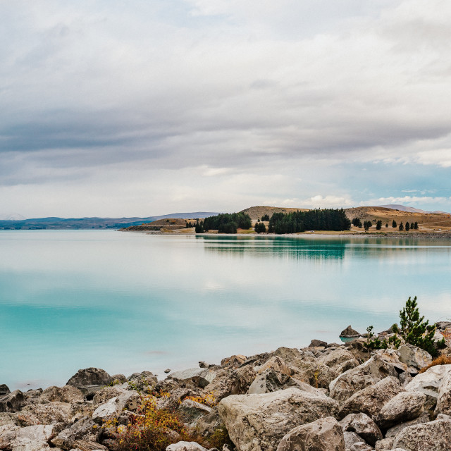 """lake pukak in New Zealand."" stock image"