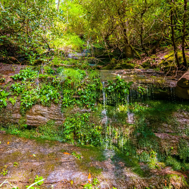 """beautiful watrefalls in upstate south carolina"" stock image"