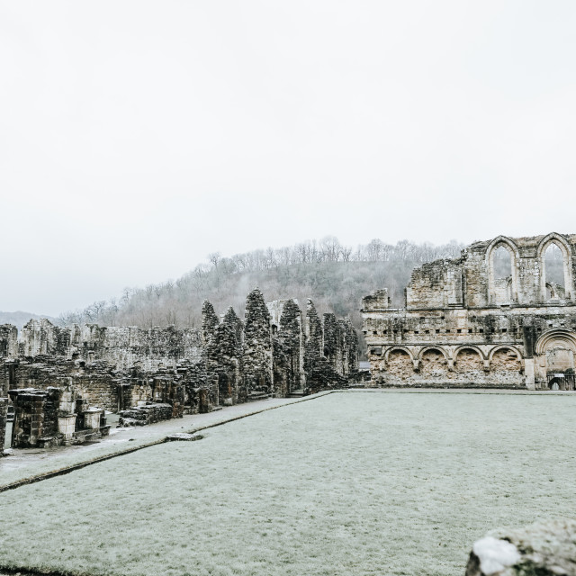 """WINTER AT RIEVAULX ABBEY"" stock image"