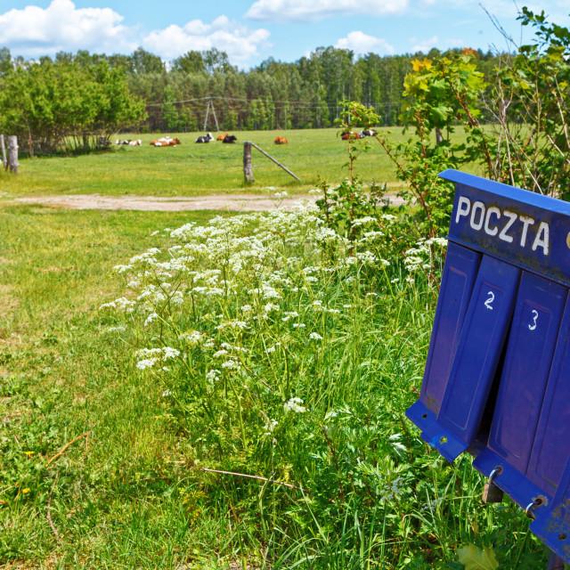 """""""Blue mailbox with """"POST"""" sign in polish language at the countryside"""" stock image"""