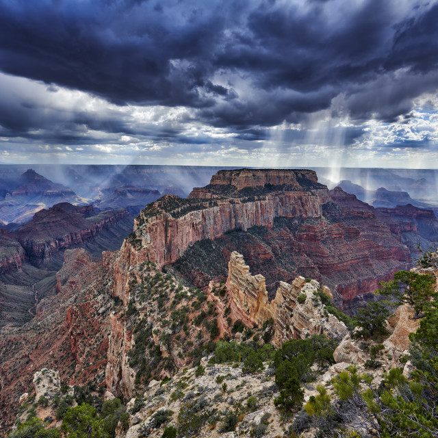 """""""dramatic clouds with sun beams and rain over Grand Canyon"""" stock image"""