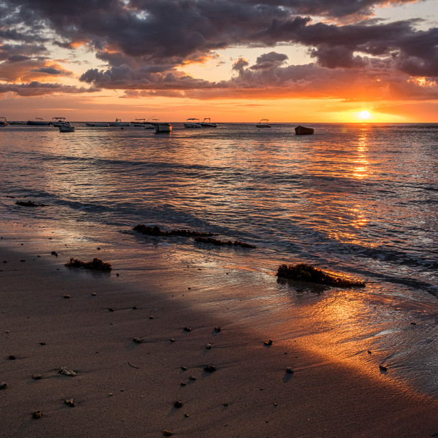 """Tamarin Sunset - Mauritius"" stock image"