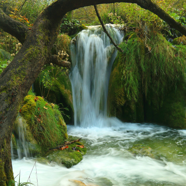 """Panoramic beautiful deep forest waterfall in Croatia"" stock image"