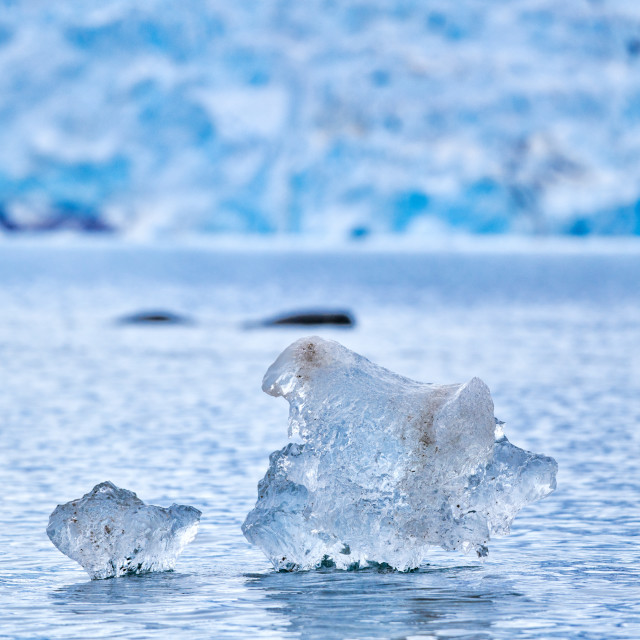 """""""small pieces of ice flooting in front of glacier"""" stock image"""