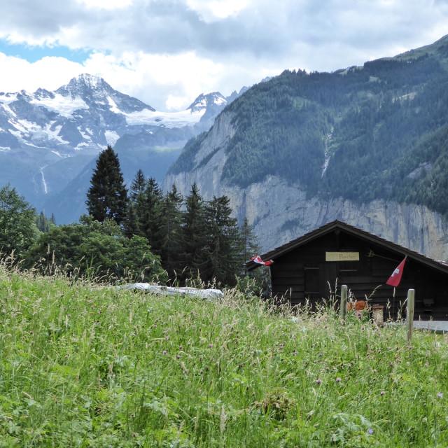 """Swiss Farm"" stock image"