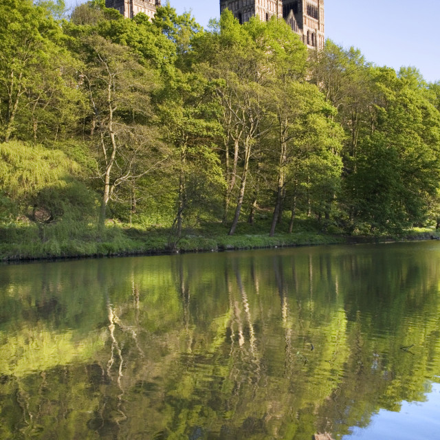 """""""Durham Cathedral and River Wear in Spring"""" stock image"""
