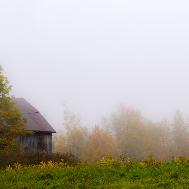 """""""Old wooden barn in a foggy field in autumn; Waterloo, Quebec, Canada"""" stock image"""