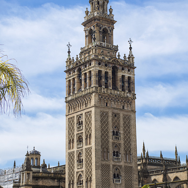 """""""Giralda, bell tower of Seville Cathedral, and rooftops; Seville, Spain"""" stock image"""