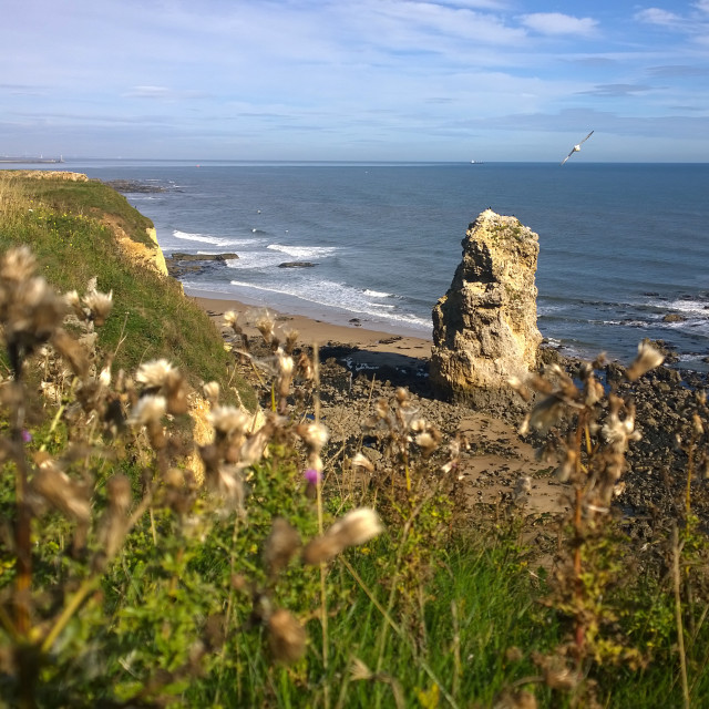 """Rock Formation near Sunderland"" stock image"