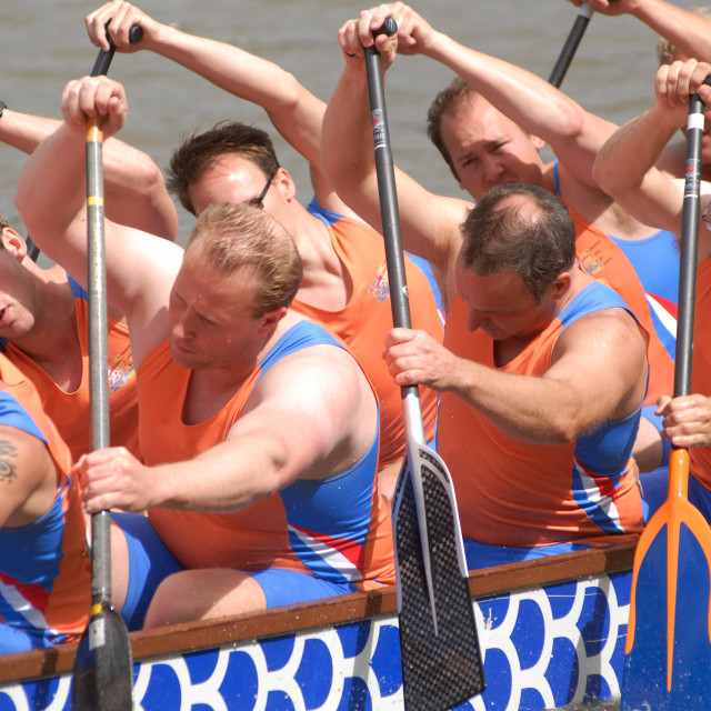 """Dragonboating - European Championships - Amsterdam Dutch premier team."" stock image"