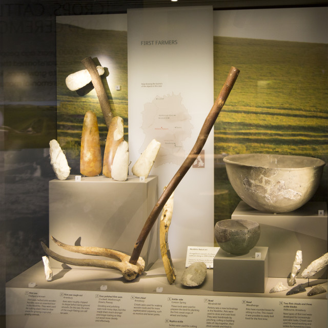 """""""Display of neolithic finds of farming tools. With permission of Wiltshire..."""" stock image"""