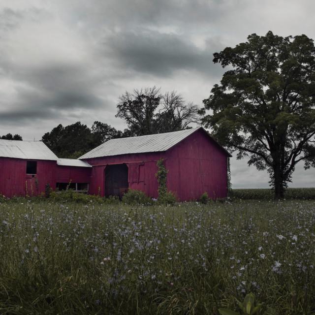 """FR Barn America 03"" stock image"