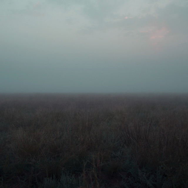 """""""FR Grasslands 02"""" stock image"""