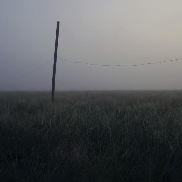 """""""FR Grasslands 03"""" stock image"""