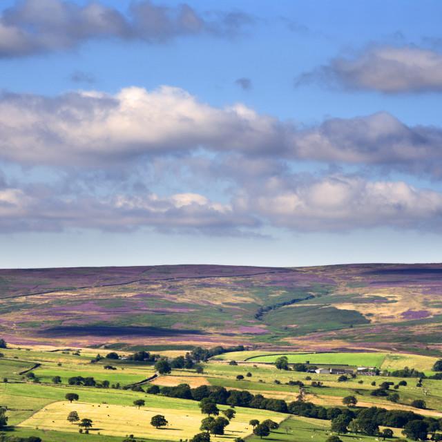 """Blubberhouses Moor from Ilkley"" stock image"