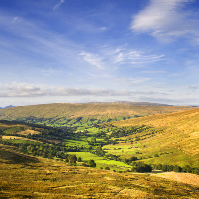 """""""Deepdale Yorkshire Dales"""" stock image"""