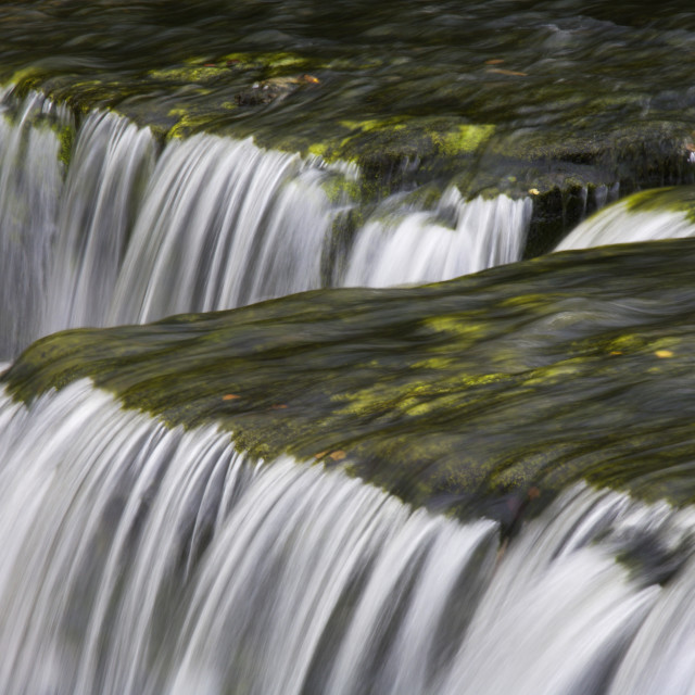 """Aysgarth Falls in Wensleydale"" stock image"