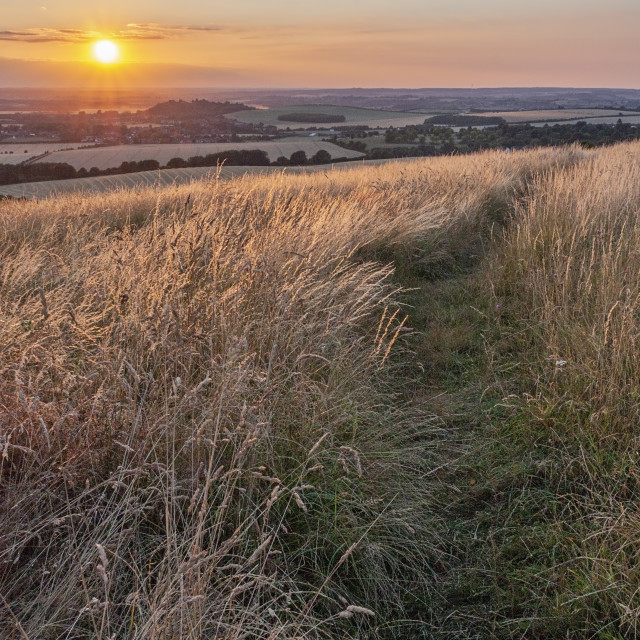 """Dunstable Downs Sunset"" stock image"