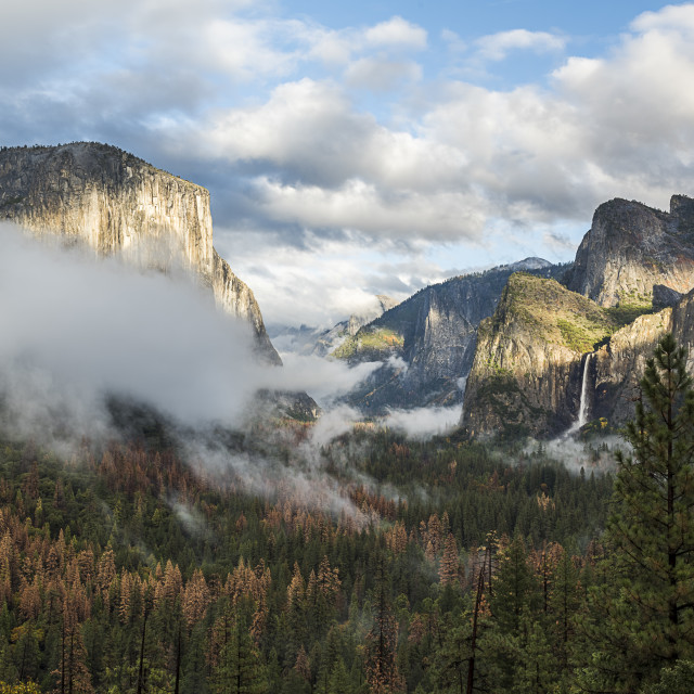 """""""The Mountain, the Valley and the Fog..."""" stock image"""